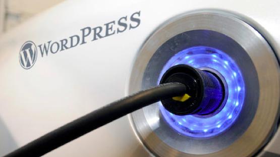 テーマとプラグインで自分だけのサイトにカスタマイズできるWordPress